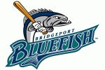 Bridgeport Bluefish	 since 1998