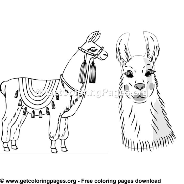 Llama 4 Coloring Page Animal Coloring Pages Coloring Pages