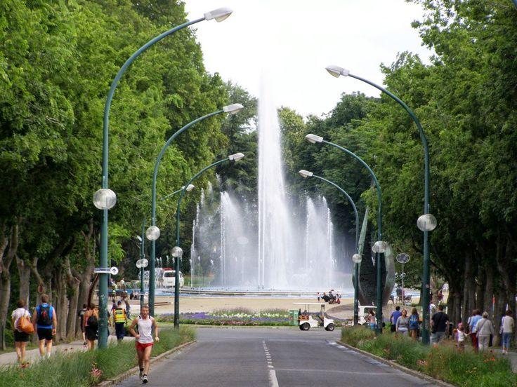Margitsziget bejárat 2013 - Forrás: www. szarnybontogato.blogspot.com