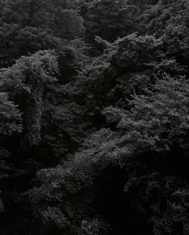 SHIMPEI YAMAGAMI