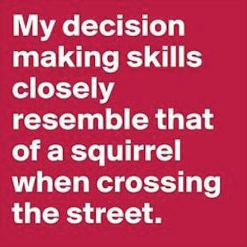 My decision making skills closely resemble that of a squirrel when crossing the road.