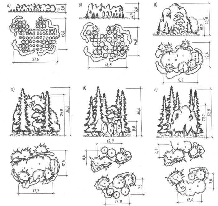Рис. 14.3. Развитие внешнего облика растительной группы в различные возрастные периоды