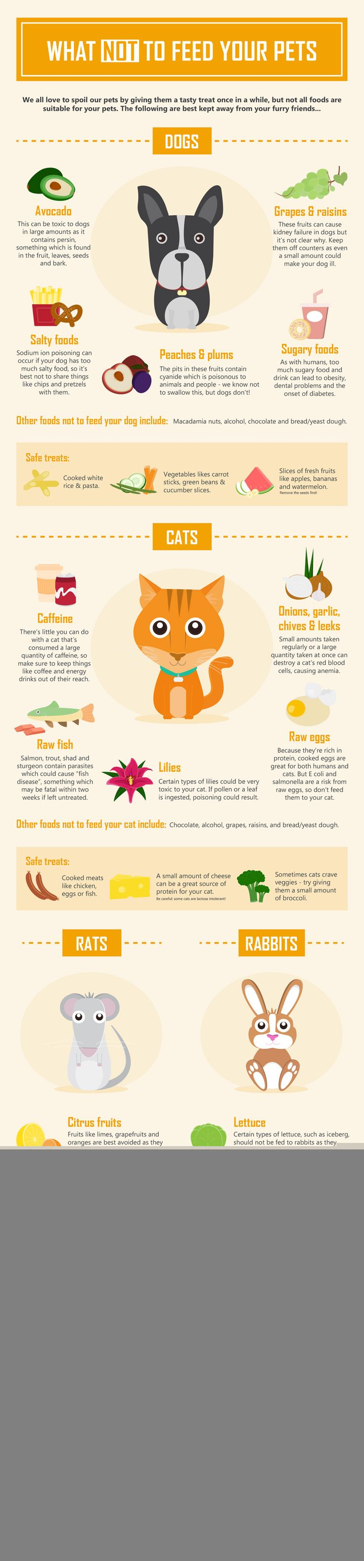 What not to feed your pet