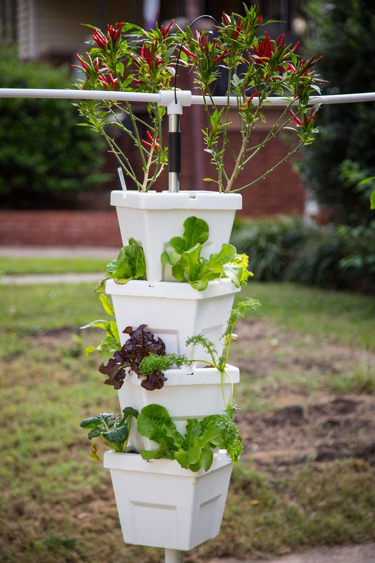22 Amazing Vertical Garden Ideas For Your Small Yard: 1000+ Images About Hydroponic Inspirations On Pinterest