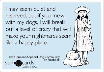 I'm not quiet or reserved but if you touch my dog in anger i will do horrible, unspeakable things to you