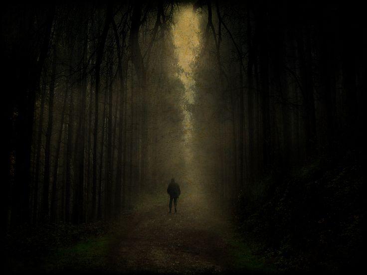 dark_forest_walk_by_tadbeer.jpg (3192×2394)