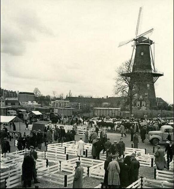 De vroegere Veemarkt bij Molen de Valk in Leiden.