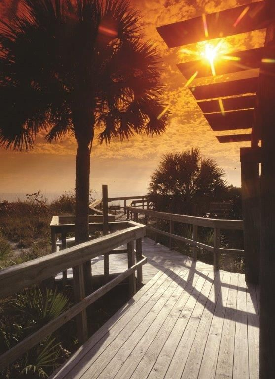 32 best images about sanibel island florida on pinterest for Warmest florida beaches in december