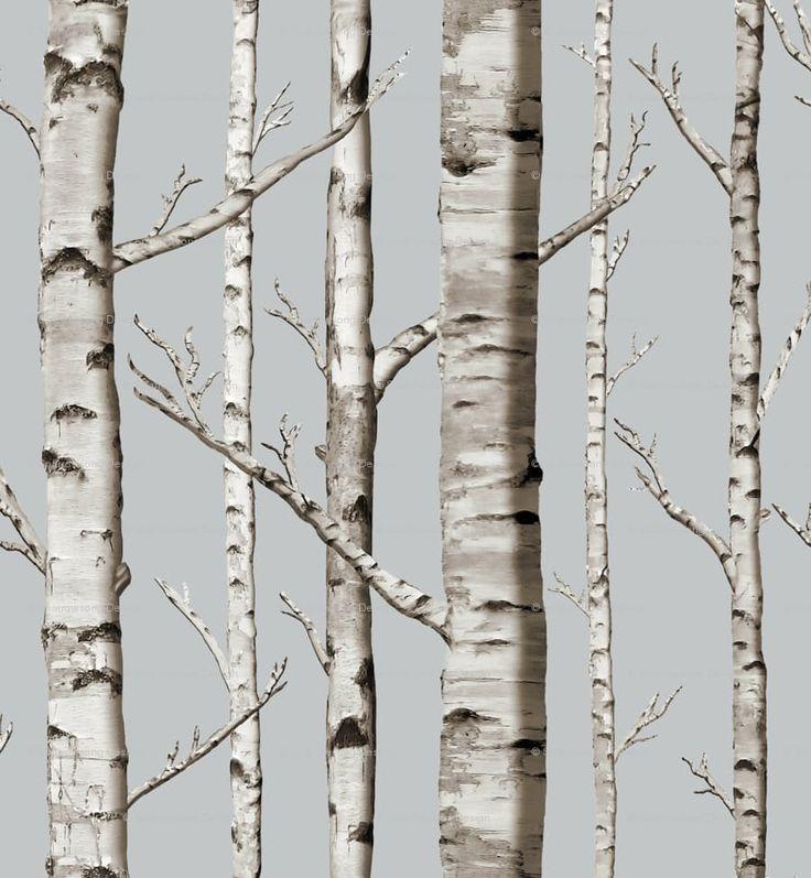 Best 25 birch tree wallpaper ideas on pinterest tree for Beautiful birch tree wall mural
