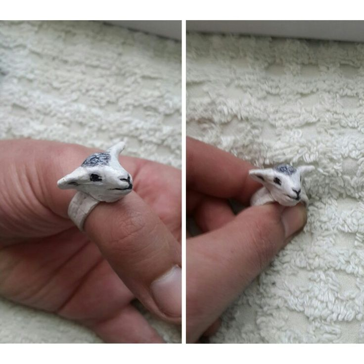 Leather rings sheep