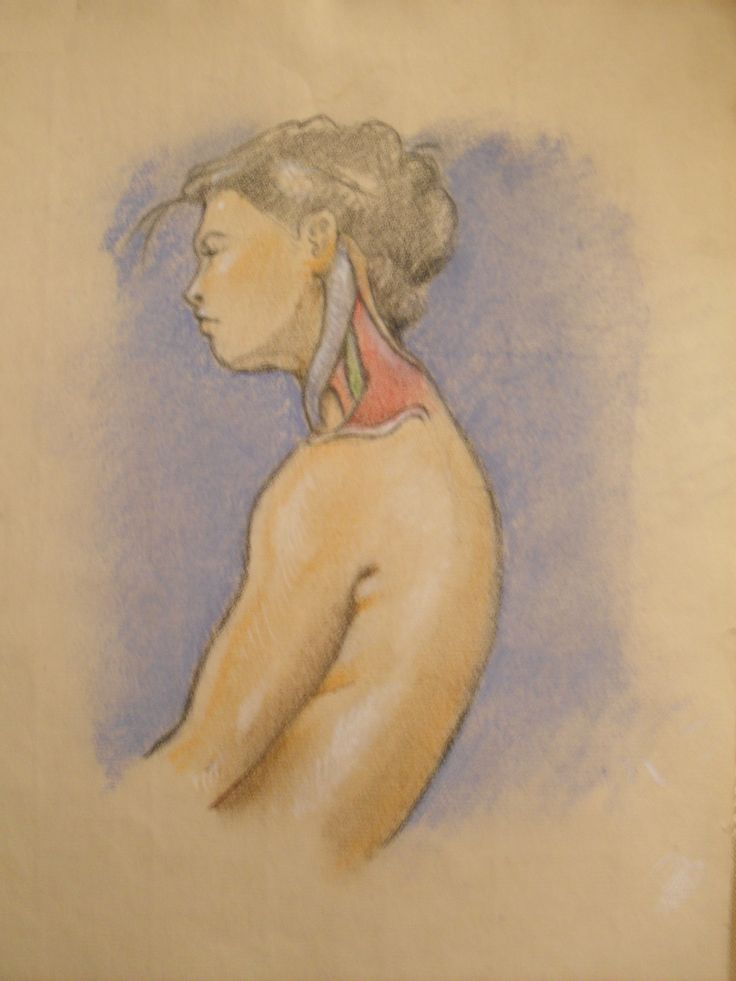 Anatomical sketch by artist Jorge A. Porto. 21 x 30 cm., pastels on pink prepared paper