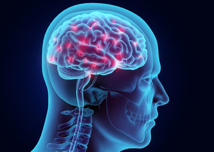 The brain is only part of the head, so there is a difference between head injuries and brain injuries.