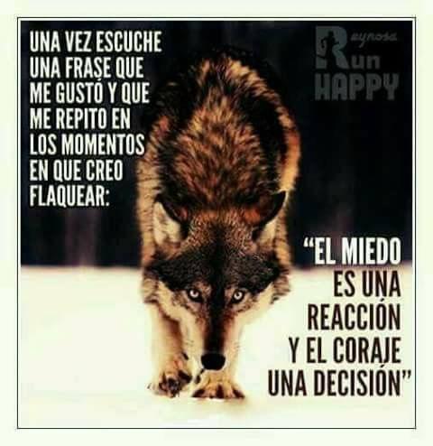 El miedo es una reacción y el coraje una decisión.