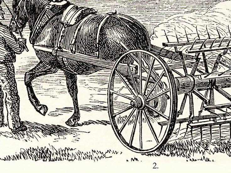 Detail kresby koní, zapřežených do strojů na hospodaření na louce