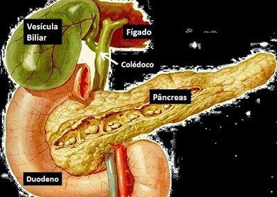 Três ótimas receitas caseiras para pancreatite | Portal PcD On-Line
