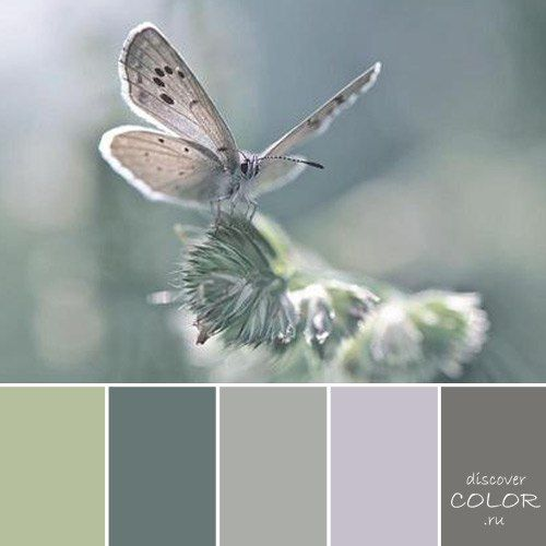 Beautiful neutral tones (I love the overall undertones of greys beneath each colour)                                                                                                                                                                                 More