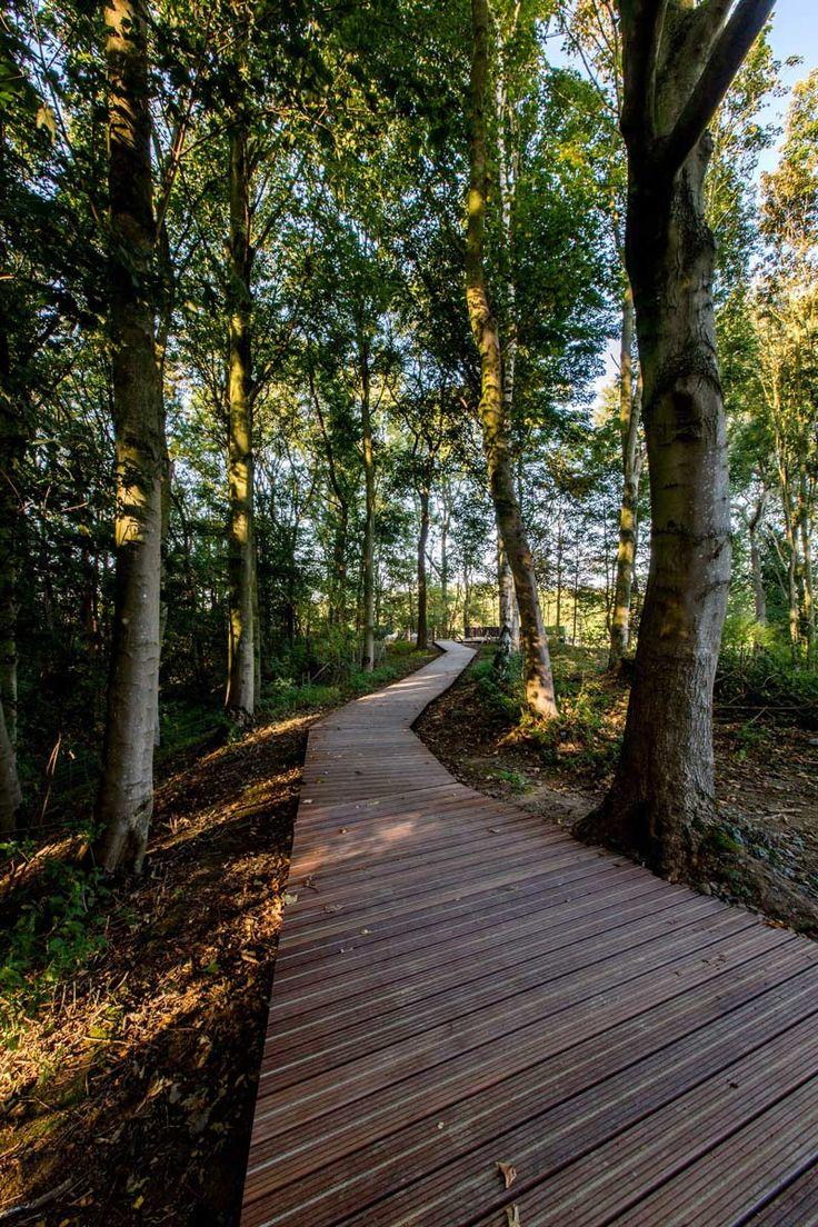 ww1-landscape-memorial-forest-path-Ypres-Belgium-omgeving-landscape-architecture-16 « Landscape Architecture Works | Landezine