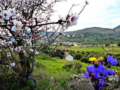 χωριό ζωή στη φύση: Η ομορφιά τις φύσης στην Ελλάδα μας