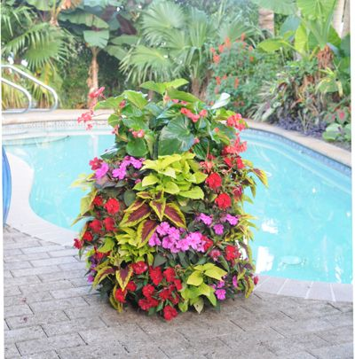 Pamela Crawford's NEW Flower Tower! This is a great new side planter to get instant color impact on your porch or patio. Order from Kinsman Garden