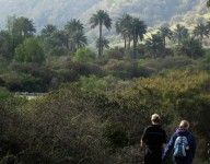 "la Campana national park in central Chile. ""biosphere reserve"" Ecochile's day tour."