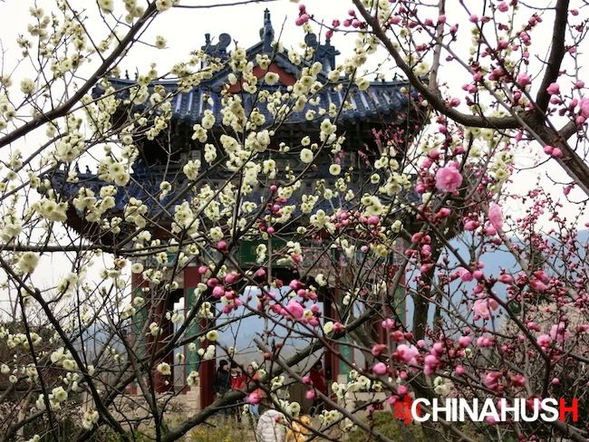 The temple at the top of Plum Blossom Mountain. Visit ChinaHush.com to see all the photos.