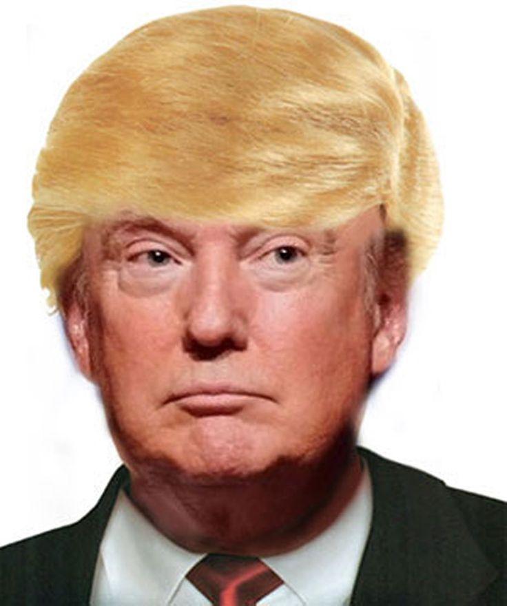 Donald Trump Wig Comb Over #Seasonal #Wig