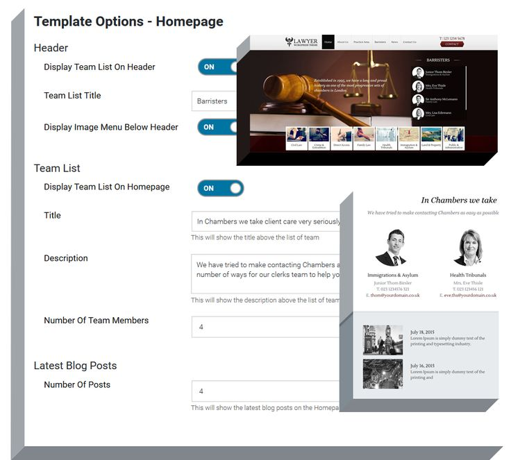 home-page-theme-options