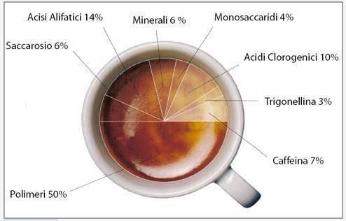 @cherrys-club Café Mexicano: Infografías