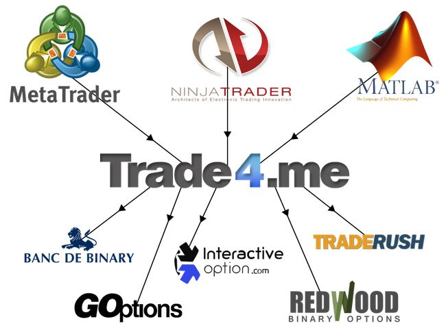 Copy trades binary options