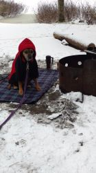 Winter camping - AIP Style