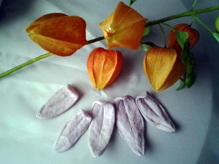 Лепка физалиса - Ярмарка Мастеров - ручная работа, handmade
