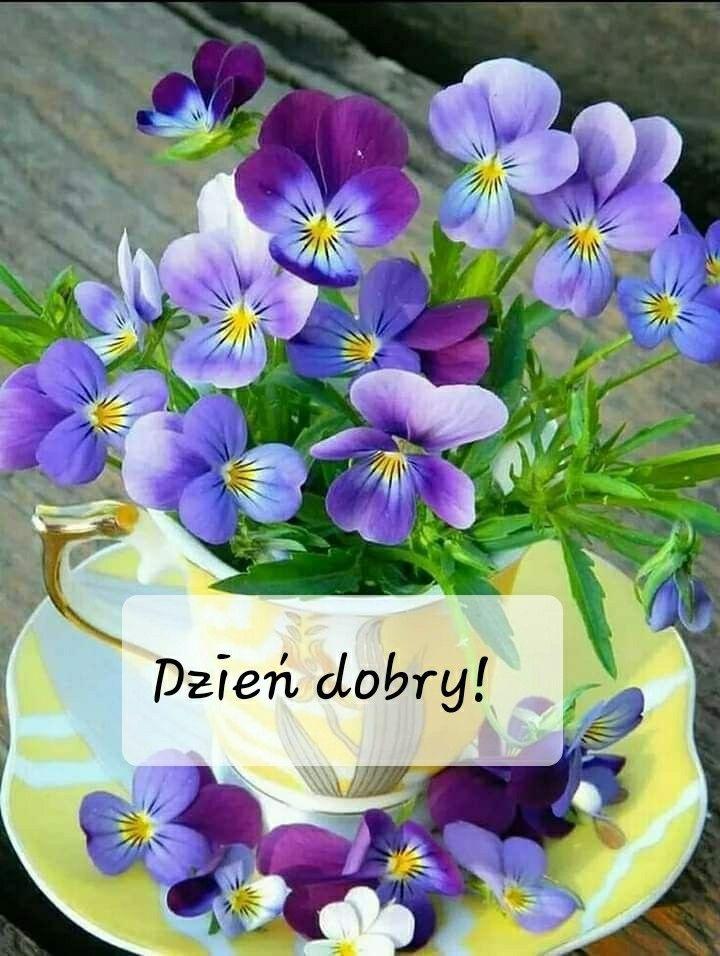 Dzien Dobry Good Morning Wishes Good Morning Images Good Morning