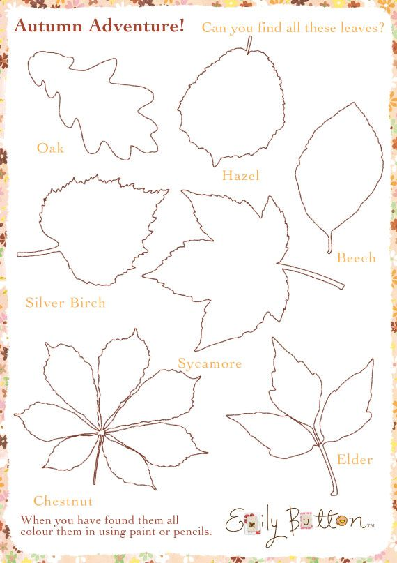 Autumn leaves activity sheet #EmilyButton #Autumn #ActivitySheet