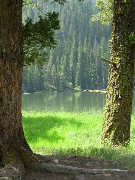 Fairy Lake A Beautiful Hike About 20 Miles Outside Bozeman