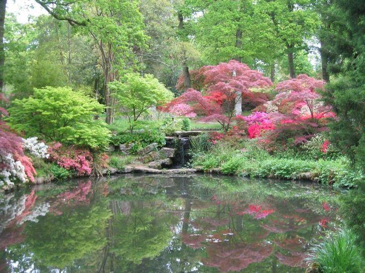 Exbury Gardens In England