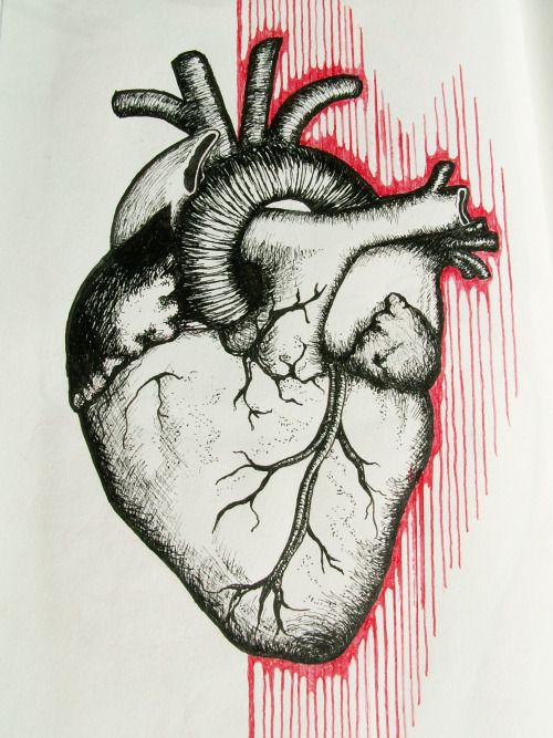 heart on a page by monocore mncore.tumblr.com   #illustration #drawing #cross-hatching
