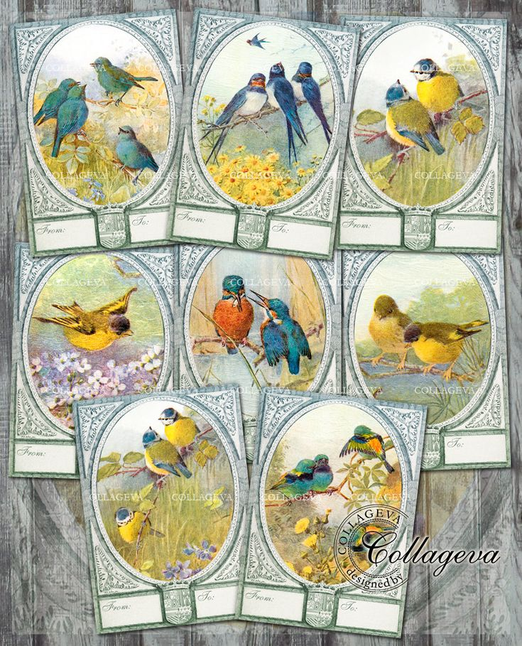 Digital Vintage Labels Gift Tags, ATC ACEO Cards, Printable Collage Sheet & Separated Images, Spring Birds Swallow Titmouse Clipart (T005-a) by collageva on Etsy