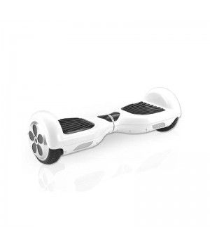F-Wheel TwistBoard : le segway sans guidon