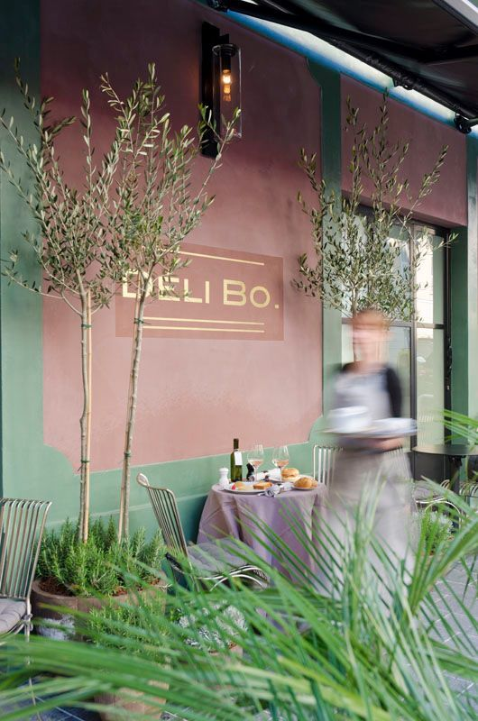 Olive tree and rosemary planters // Déli Bo in Nice