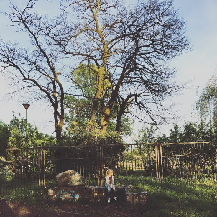 Tree. #nature #kids #photo #photography