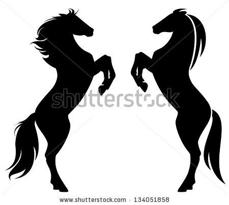 rearing up horse fine vector silhouette and outline - graceful black stallions against white - stock vector