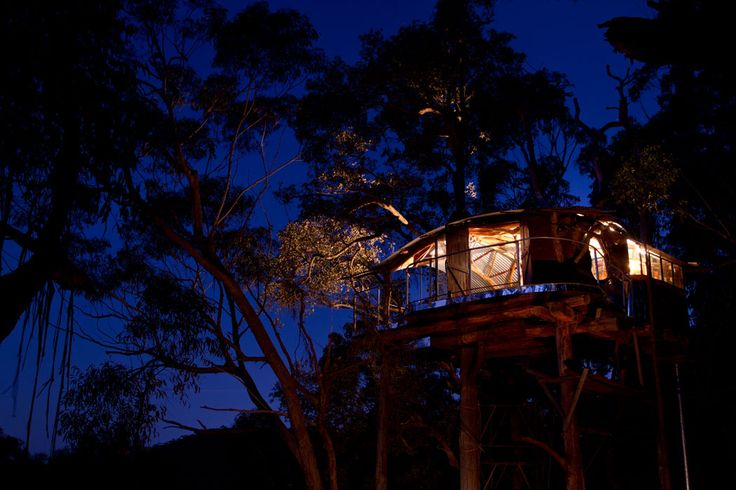Wollemi Wilderness Treehouse | Love Cabins