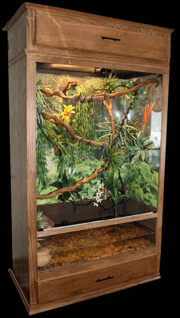 Outstanding 70+ Best Ideas Bearded Dragon Habitat https://meowlogy.com/2017/03/29/70-best-ideas-bearded-dragon-habitat/ If your plan is to house Bearded Dragons together, utilize a bigger cage to lower the potential for aggression and monitor your dragons closely. Bearded Dragons are decidedly one of the the optimal/optimally pet lizards it's possible to own. They are usually sociable...