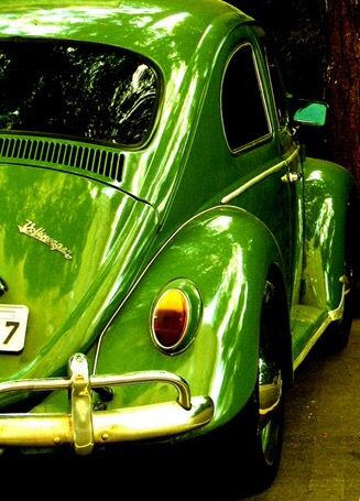 #green #life #style #500