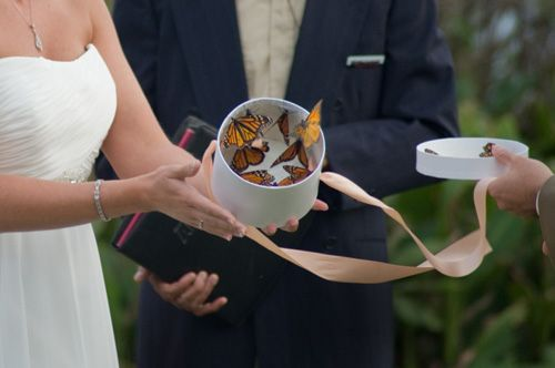 butterfly release during a moment of silence at a wedding for loved ones who have passed