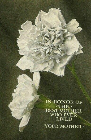 Festa della mamma Lucia