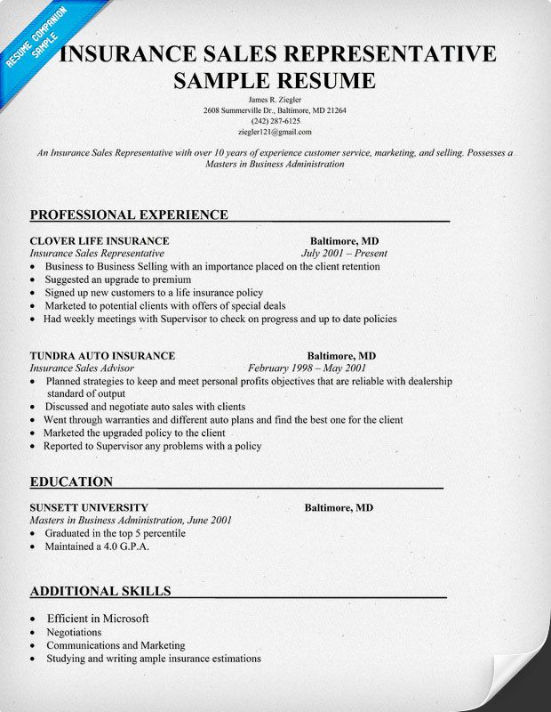 Insurance Sales Resume Example -    jobresumesample 777 - security objectives for resume