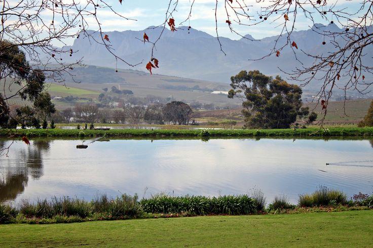 Jordan Wine Farm,Stellenbosch July 2014