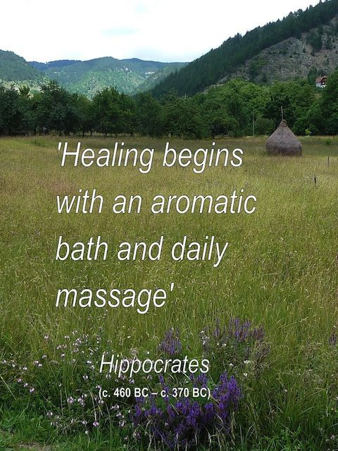 A Hippocrates Quote We Love                                                                                                                                                                                 More