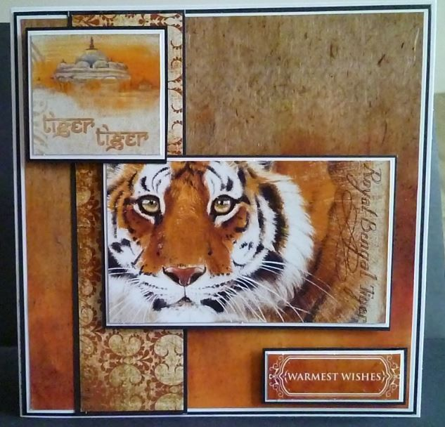 Card made using Pollyanna Pickering's new Worlds Wildlife collection - I love…